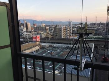 2014-10-19ant3.jpg